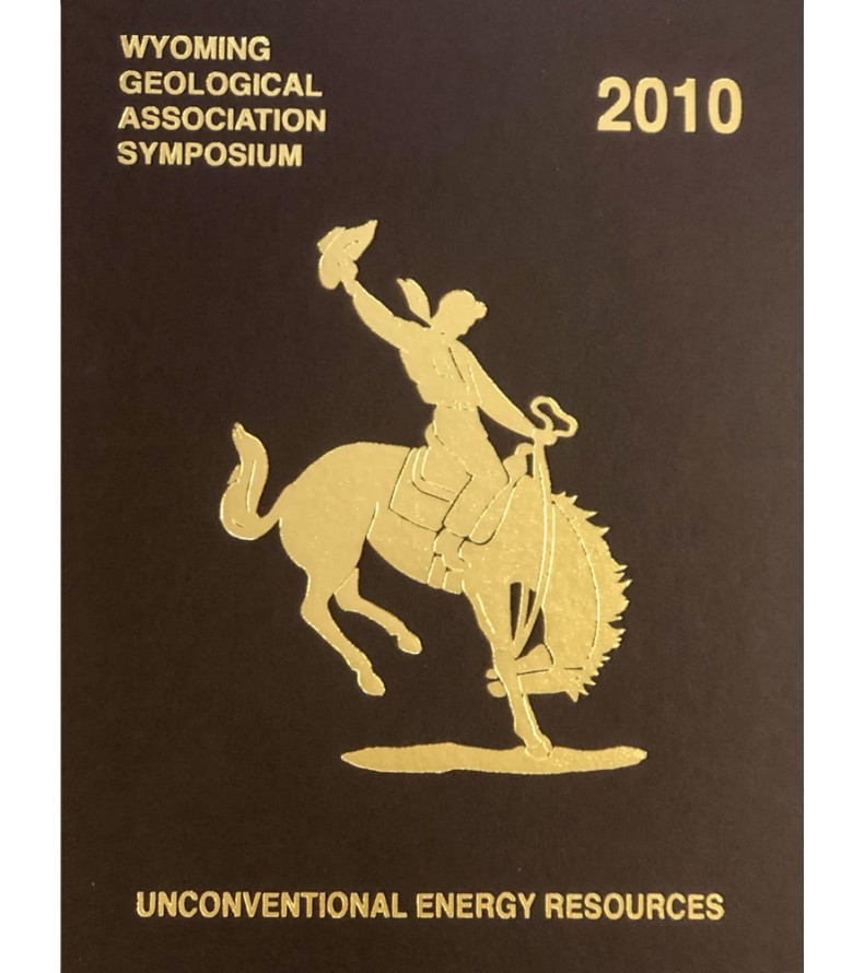 2010 Unconventional Energy Resources - Hardcover